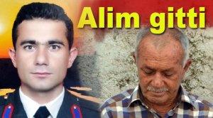 ali_alkan